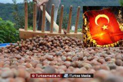 internationale-aanval-op-turkse-hazelnoten