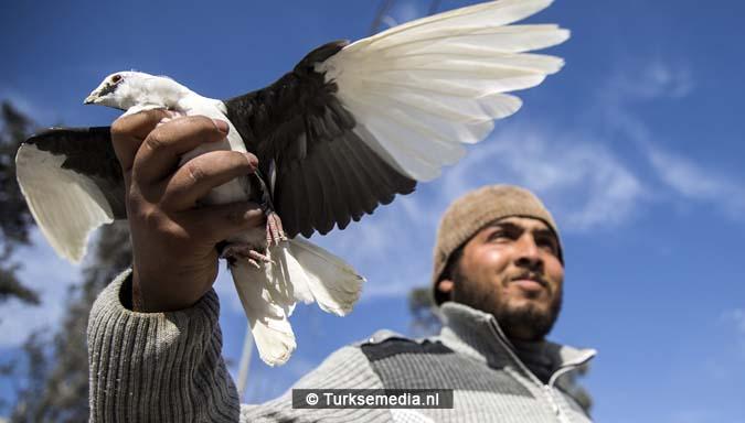 Zo vieren Syriërs de Turkse victorie op Daesh (IS)11
