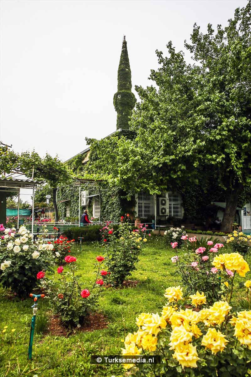 'Botanische' Turkse moskee trekt veel bezoeker4