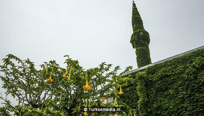 'Botanische' Turkse moskee trekt veel bezoekers1