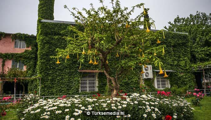 'Botanische' Turkse moskee trekt veel bezoekers2