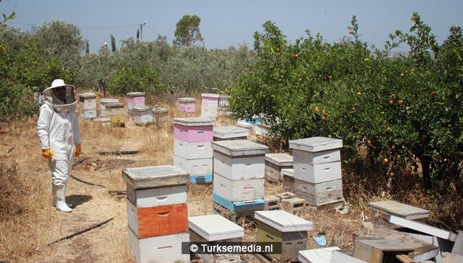 Turkse hulp aan Palestijnen reikt tot aan bijenkorven2