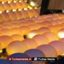 Géén fipronil in Turkse eieren, valse beschuldiging westerse media