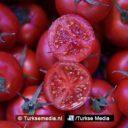 Rusland wil graag Turkse tomaten zien