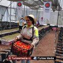 Turkije helpt honderdduizenden Mexicanen aan voedsel
