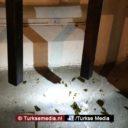 Aanslag op Turks consulaat in Amsterdam, verdachte aangehouden