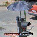 Turkse dierenliefhebber monteert paraplu boven vogelnest op stoplicht
