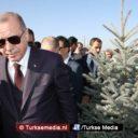 Erdoğan wil 7 miljard bomen: Turkije wereldleider in strijd tegen erosie