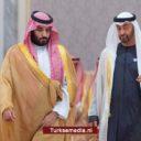 'Kroonprinsen Saudi-Arabië en VAE steunen Israël meer dan joden'