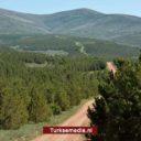 Turkije wereldwijd nummer drie in bebossing