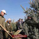 Heel Turkije plant binnen een dag 11 miljoen bomen