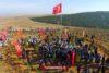 Turkije breekt wereldrecord bomen planten