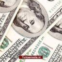 Erdoğan vraagt Turken de dollar te dumpen