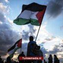 'Tijd dat Nederland Palestina erkent en Israël stopt'
