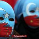VK noemt misbruik China Oeigoeren gruwelijke barbarij