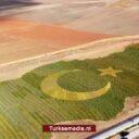 VN erkent succes Turkije aanleg nieuwe bossen: 'Nummer één van Europa'
