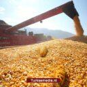 Turkse landbouwsector groeit tien kwartalen (2,5 jaar) op rij