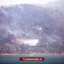 Turkije heeft tientallen bosbranden snel onder controle